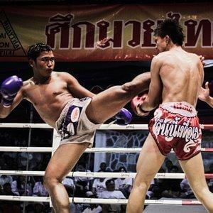 Тайский бокс и муай тай для начинающих с тренировками