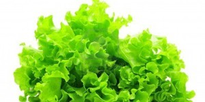 Правильное питание против целлюлита
