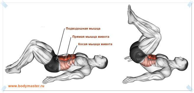 Прямые скручивания техника кранчей лежа на полу для женщин и мужчин