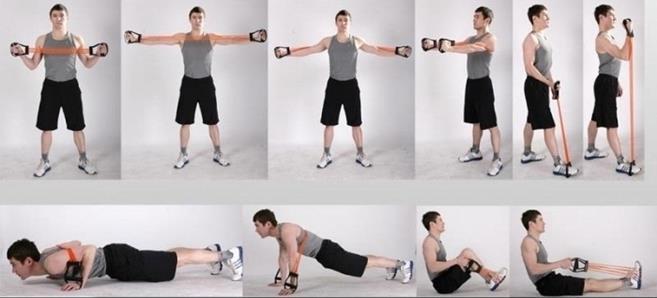 Упражнения для развития силы мышц рук и плечевого пояса.. Выживают сильнейшие. Физическая подготовка в практике боевых искусств и единоборств