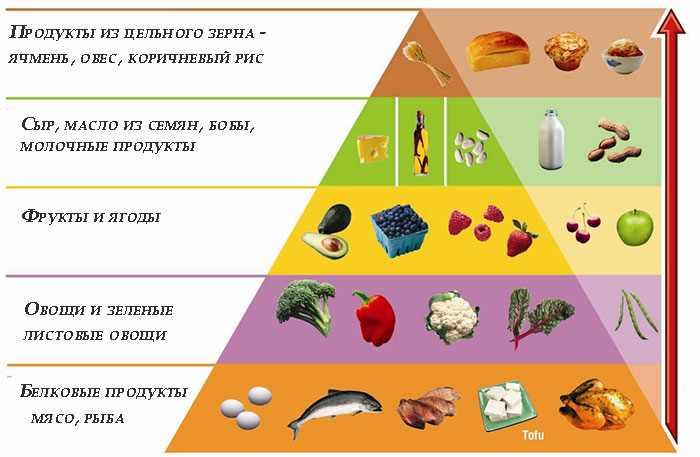 Диета Аткинса с меню на 14 дней по фазам и таблицами, новый подход к питанию от доктора Аткинса с этапами