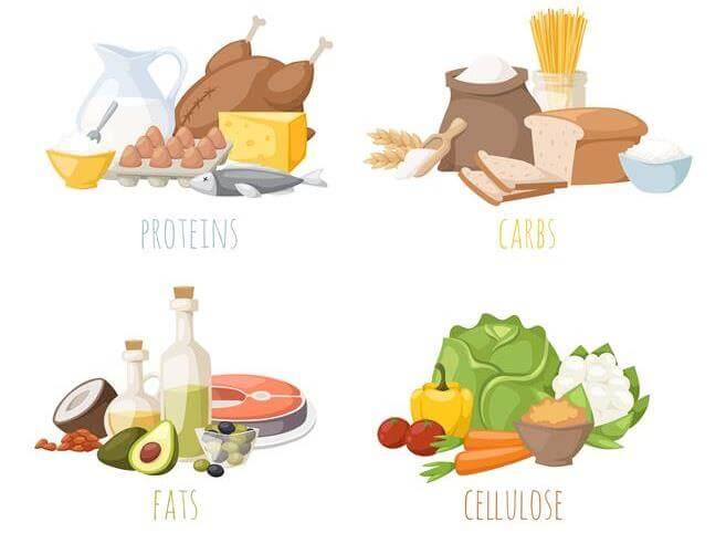 Пример раздельного питания на неделю